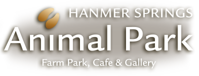 Hanmer Springs Animal Park